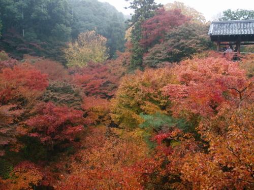 東福寺02b.jpg