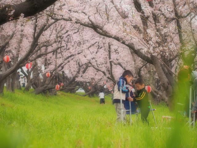 yoshida01b.jpg